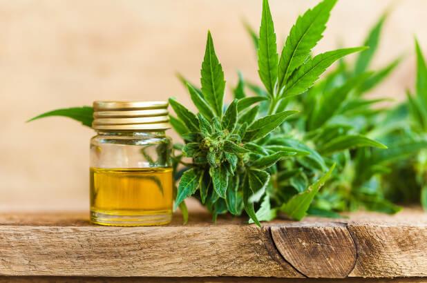 Blog image hemp seed oil benefits